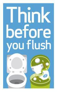 the think before you flush campaign