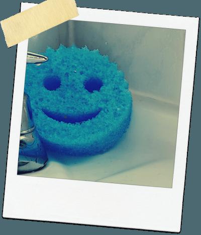 scrub daddy review blue sponge by tap
