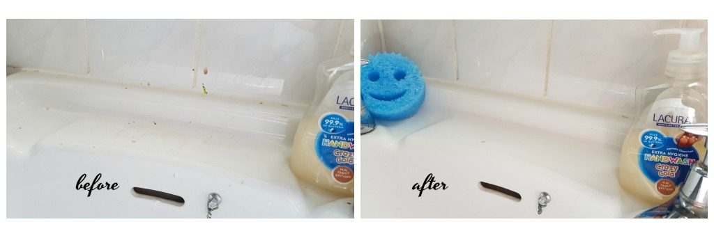 scrub daddy review before and after pictures