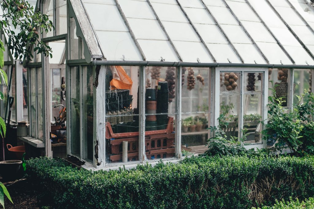 greenhouse with bushes - improve your garden